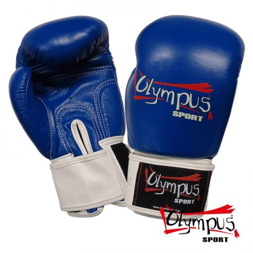401402-boxing-gloves-olympus-by-raja-leather-double-color-blue-white-800×800